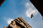 Guess The Famous Temple In India - Quizz for Skywatch