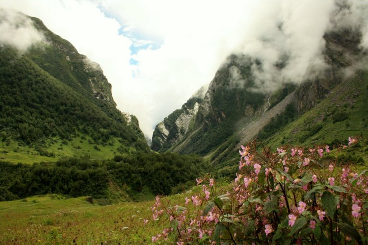 Route to the Valley of Flowers