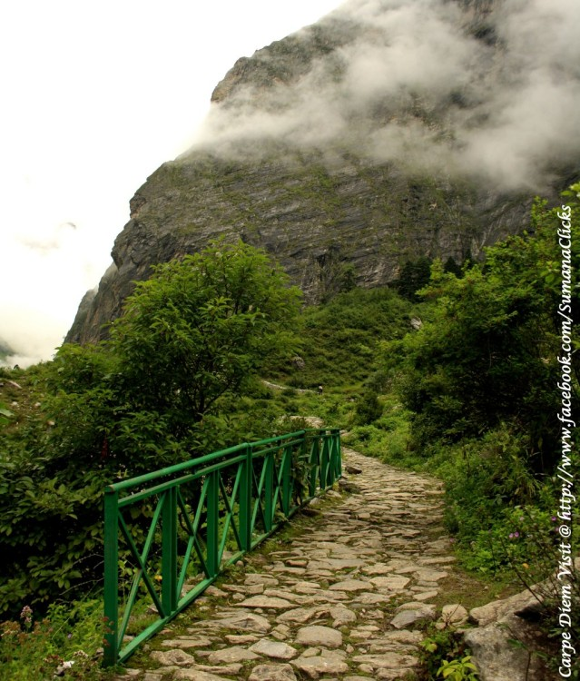 Trek To Valley of Flowers Uttrakhand