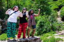 Travel Tuesday Picture: Bloggers dance in Tea Gardens of Munnar