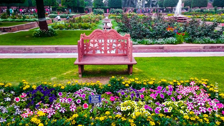 Chair for President Mughal Garden