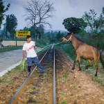 Man and Mule- Stories from Kangra Valley Railway