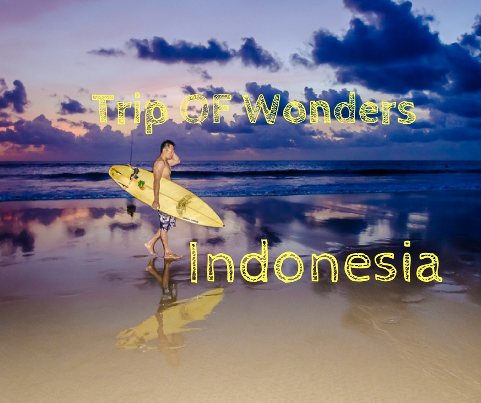 Trip of Wonders Indonesia