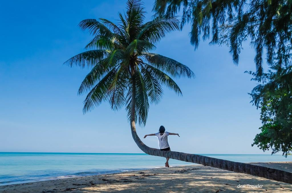 Girl sitting on bent coconut tree