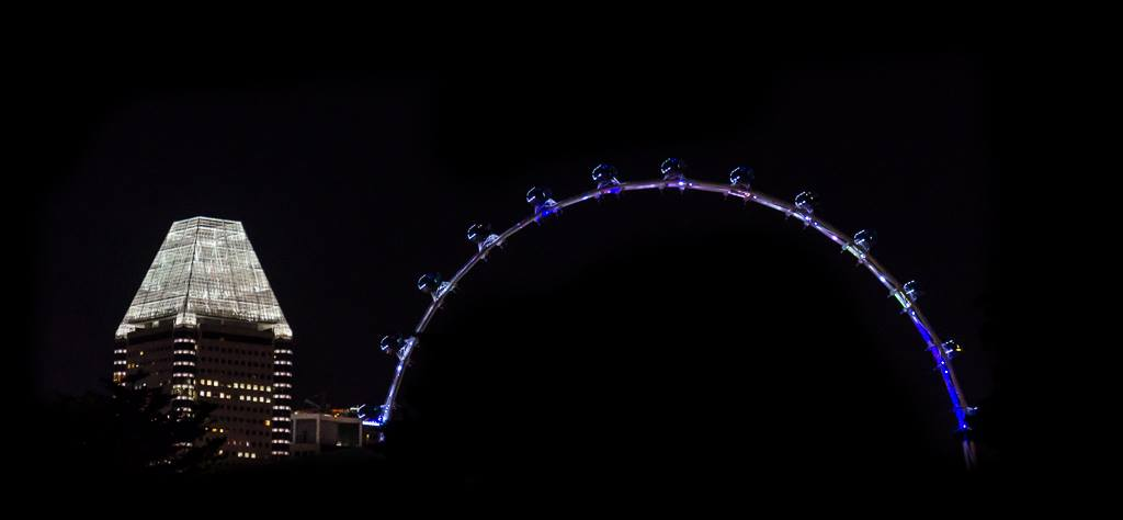 Singapore flyer night picture