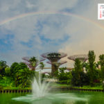 Free Download June 2019 desi Traveler Wallpaper Calendar – Rainbow At Supertree Grove Singapore