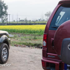 A Drive With SOUL: Rediscovering Passions