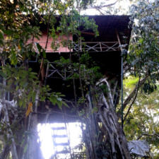 A Tree House in Wayanad Kerala- Hotel Review