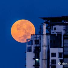 Pictures of Super Blood Moon