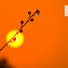 Free Download December 2019 desi Traveler Wallpaper Calendar - Sunset Aravali Biodiversity Park